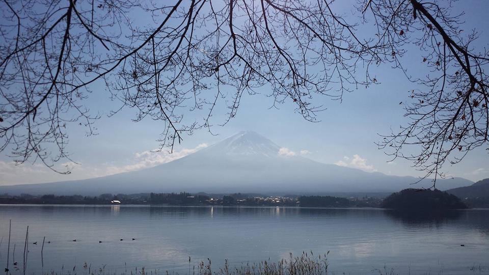Mt Fuji with Tokyo Tour