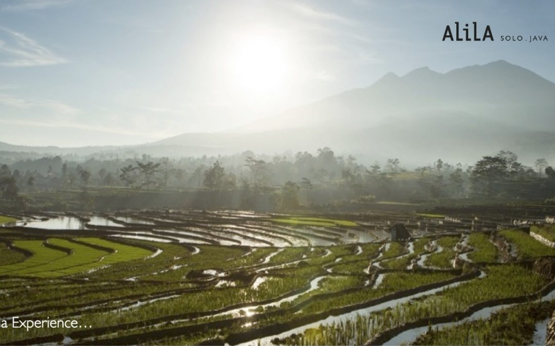 03 Days Luxe Java Experience with Alila Solo
