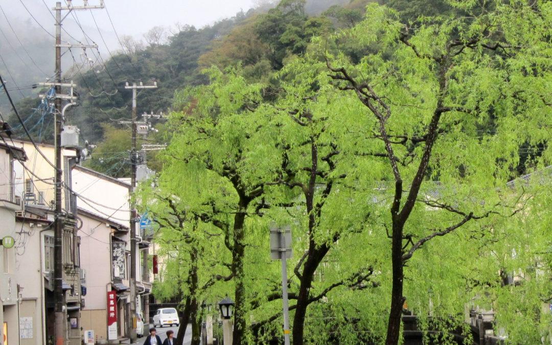 07 Days Kansai Experience by Rail (Self-Guided)
