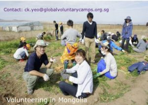 MCE's Projects for 2015 Mongolia copy