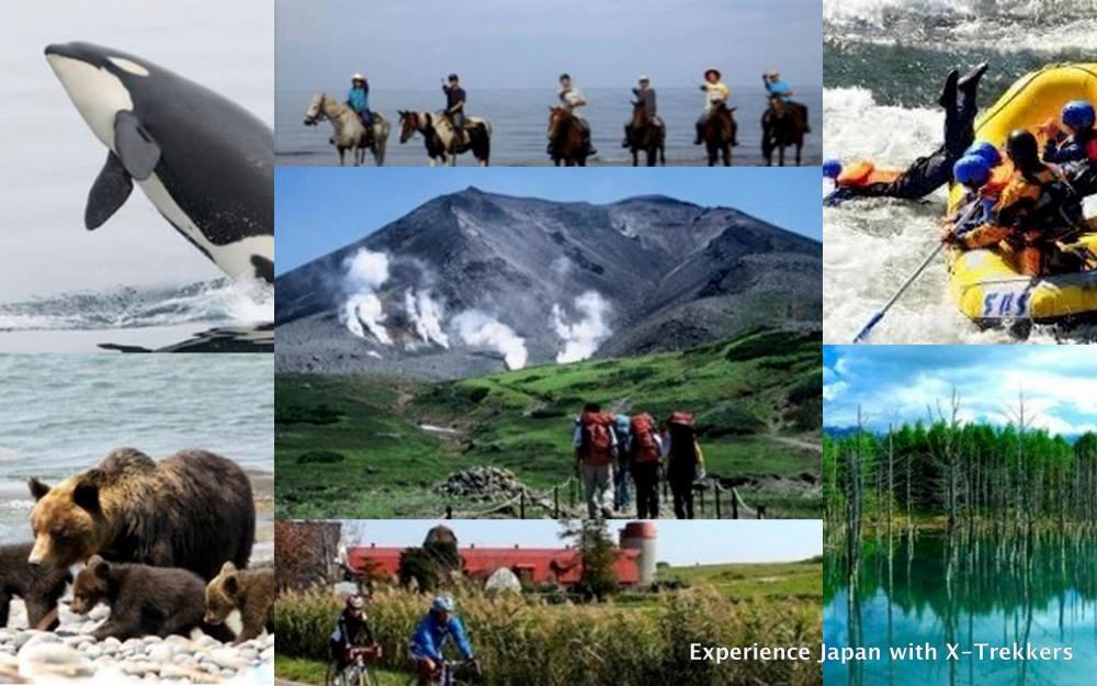 Hokkaido 7 days adventures
